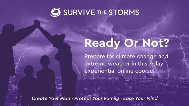 Survive The Storms Banner